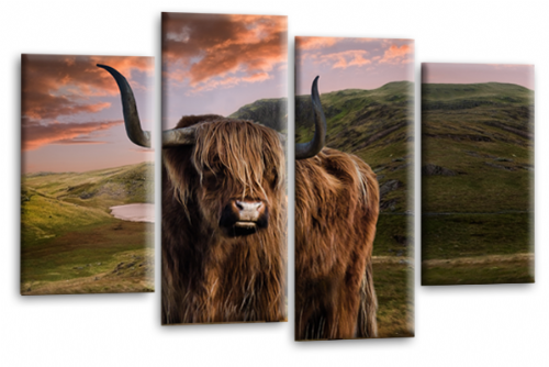 Scottish Highland Cattle Canvas Art Picture Brown Grey Animal Split Wall Print